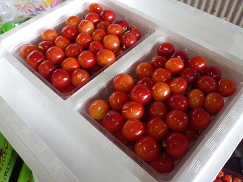 Cherry06.jpg