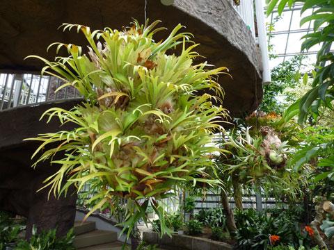 FlowerCenter_House1.jpg