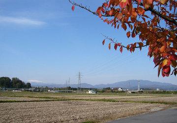 20081106_秋景色.jpg
